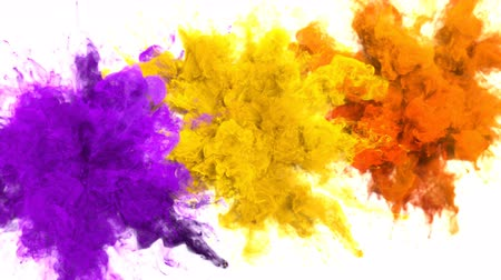 yanma : Purple Yellow Orange Color Burst - Multiple colorful smoke powder explosion fluid ink particles slow motion alpha matte isolated on white