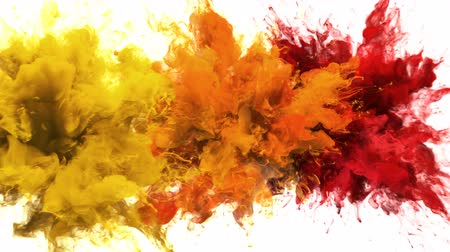 kitörés : Yellow, Orange, Red Color Burst - Multiple colorful smoke powder explosion fluid ink particles slow motion alpha matte isolated on white Stock mozgókép