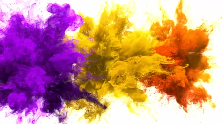 yanma : Purple, Yellow, Orange Color Burst - Multiple colorful smoke powder explosion fluid ink particles slow motion alpha matte isolated on white