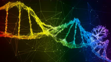 genetic research : Abstract iridescent rainbow binary digital plexus DNA molecule structure research visuals biology biotechnology chemistry science Medicine motion background medical dashboard colorful Seamless Loop Stock Footage