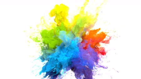 színek : Color Burst iridescent multicolored colorful rainbow smoke powder explosion fluid ink particles slow motion alpha matte isolated on white Stock mozgókép
