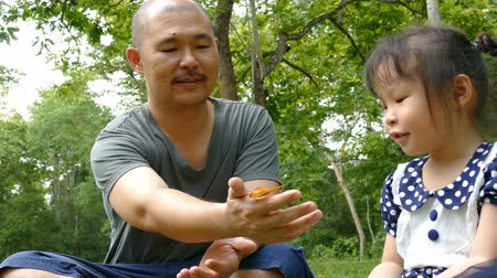 Asian father and daughter watching butterflies in forest