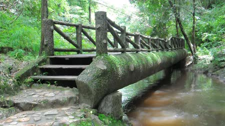 wooden path : wood bridge on the river
