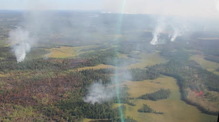 In flight aerial view of smoke columns in widespread forest fire