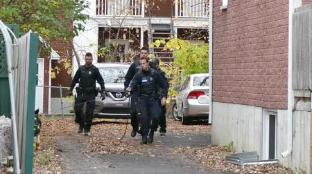Group of policemen with K9 dog searching in residential buildings driveway Stock Footage