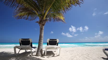 raj : Caribbean beach with sun umbrellas and beds, Cancun, Mexico Wideo