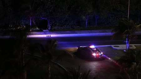 polícia : Police car lights flashing at night downtown