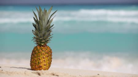 ananas : Pineapple fruit on sand against turquoise caribbean sea water. Tropical summer vacation concept Stok Video