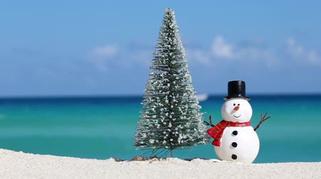 рождественская елка : Snowman toy and spruce tree at white sandy beach on Caribbean sea background. Christmas celebration Стоковые видеозаписи