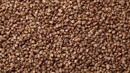 trigo sarraceno : Rotating raw buckwheat