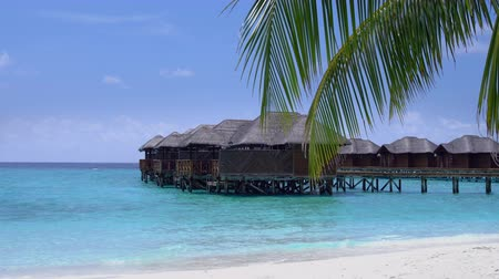 домик : Tropical travel destination with water bungalows through palm tree leaves at maldivian island