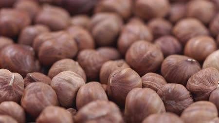 высушенный : Hazelnut closeup. Rotating nuts background