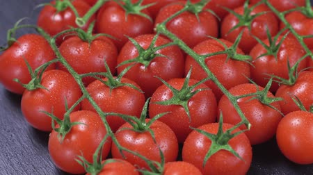 tomates cereja : Ripe cherry tomatoes closeup on black background Vídeos
