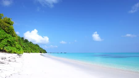 Мальдивы : Perfect wild Maldives Island with turquoise sea view