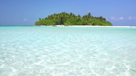 dominican : Perfect wild Maldives Island with coconut palm trees