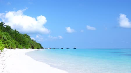 maldivler : Perfect wild sandy Maldives beach with turquoise sea view, nobody Stok Video