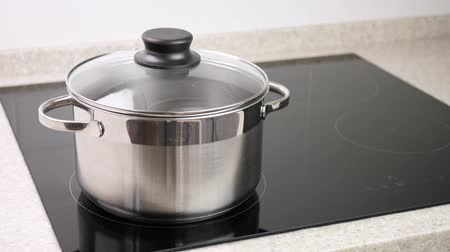 induction cooker : Metal pot on top of induction stove