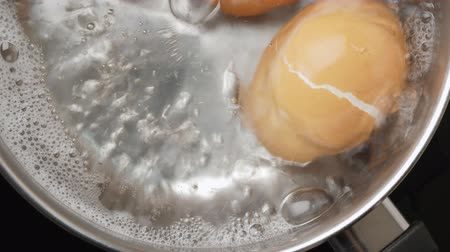 purificado : Chicken eggs boiling in stainless steel pan