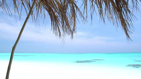 Канкун : Perfect wild Maldives shore with turquoise sea water and white sand Стоковые видеозаписи