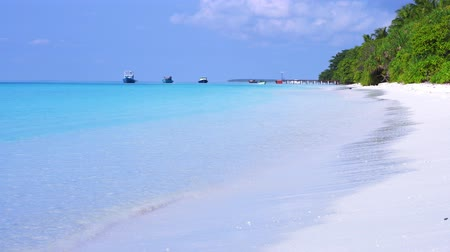 white sand : Perfect wild sandy Maldives coastline with turquoise sea view