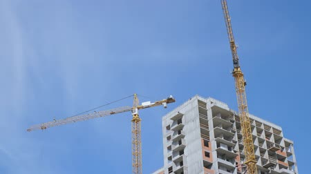 em desenvolvimento : Cranes on blue sky background