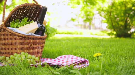 hasır : Wicker picnic basket with cheese and wine on red checkered table cloth on grass in park Stok Video
