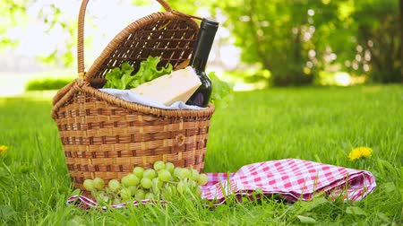 proutěný : Wicker picnic basket with cheese and wine on red checkered table cloth on grass in park Dostupné videozáznamy