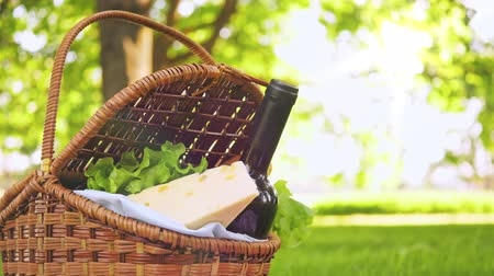 grape basket : Wicker picnic basket with cheese and wine on red checkered table cloth on grass in park Stock Footage