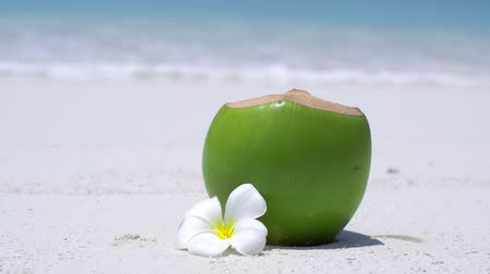 Fresh coconut juice decorated tropical plumeria flower on sandy beach
