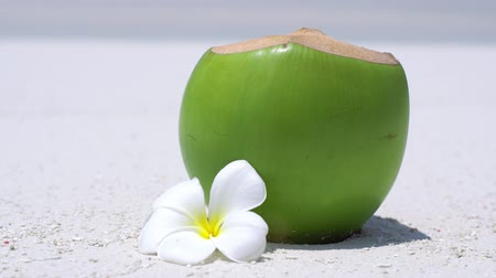 sandpit : Fresh coconut juice decorated tropical plumeria flower on sandy beach