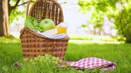 hasır : Vegan picnic with healthy food in park outside at summer day