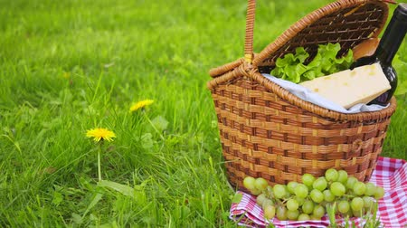 apple park : Wicker picnic basket with cheese and wine on red checkered table cloth on grass in park Stock Footage
