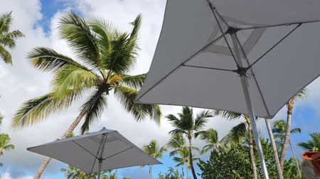 旅行の目的地 : Sunshade umbrellas and coconut palm trees on blue sky and clouds background