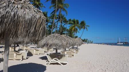 deck chairs : Coconut palm trees, thatched sun umbrellas and plastic sunbeds on tropical beach