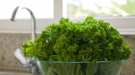 промывали : Freshly washed green kale cabbage leaves in kitchen