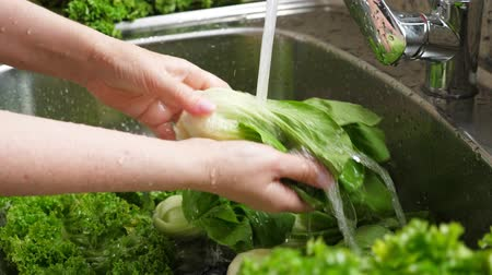 jarmuż : Woman washing in water in sink green pok choy cabbage leaves in kitchen