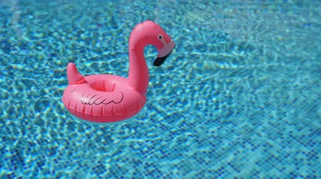 à beira da piscina : Inflatable toy of pink flamingo in swimming pool at poolside