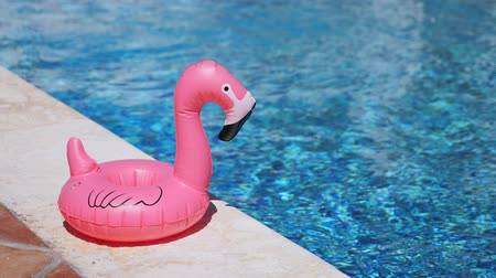 à beira da piscina : Inflatable toy of pink flamingo near swimming pool at poolside Vídeos