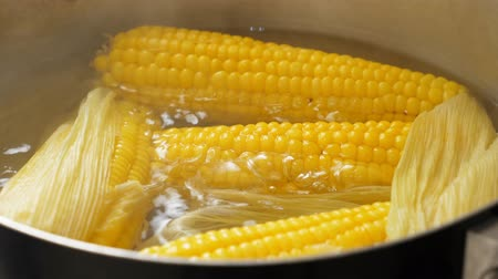bubbling : Boiling corn at the pan Stock Footage