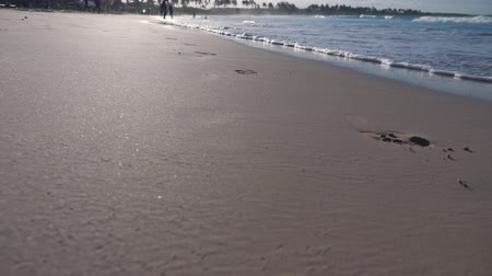 dominikana : Woman walking along macao beach leaving footprints on sand