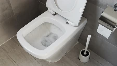 sedes : White toilet bowl in a bathroom. Flush water away Wideo