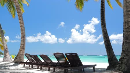 saona : Beach calm scene with sunbeds under coconut palms close to Caribbean sea Stock Footage