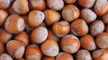 avelã : Hazelnut abstract background. Rotate Stock Footage