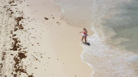 saona : Aerial view from drone on caribbean sea beach with woman walking along shore