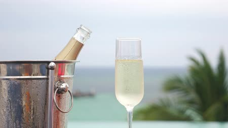 champagne flute : Cold champagne bottle in ice bucket and glass of sparkling wine in hand
