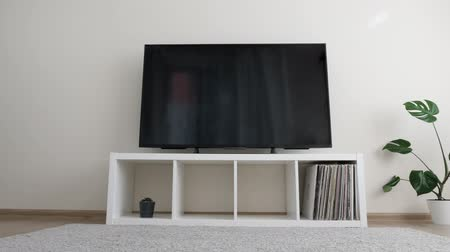 vinil : Living room with LCD TV, records, plants Stock Footage