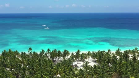 saona : Aerial view on tropical island with coconut palm trees and turquoise caribbean sea