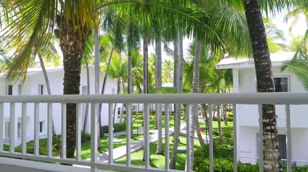 Канкун : Tropical view on garden with palm trees from hotel balcony. Summer vacations Стоковые видеозаписи