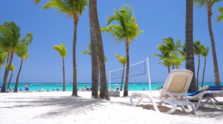 サンベッド : Caribbean seashore with coconut palm trees and sunbeds. Summer holidays