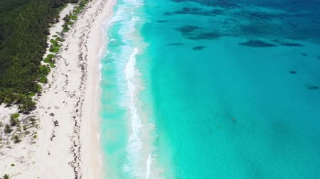 helikopter : Aerial view from drone on caribbean sea coastline with coconut palm trees